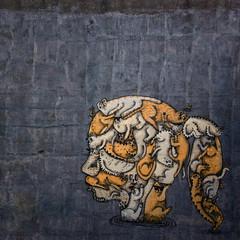 011:365+1 - Cats On The Brain (Hatting Spook) Tags: 2017 3651 cat lady crazy brain graffiti orange wall singleforever