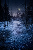 Frozen Twilight (Repp1) Tags: bc landscape snow surrey winter hiver niege twilight night nuit crepuscle hawethornepark moon lune stars étoiles lake lac pond étang stream ruisseau ice glace