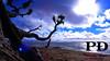 Azul / Blue (Pétruzz Ðias Fotografias) Tags: pelotas balneáriodosprazeres paisagem praia riograndedosul rgs rs azul verde green blue
