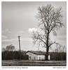 K1IM1675-Edit (Schleiermacher) Tags: arkansas delta k1 mattmathews pentax blackwhite farms monochrome rural m2004