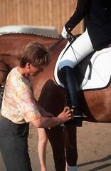 lzs7-2407 (lotharlenz) Tags: zirgs pferd paard konj horse hobu hestur hest häst equus cheval cavalo caballo reitstiefel lotharlenz
