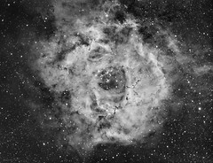 Rosette nebula (NGC2244 + NGC2237) in Ha (Pwsasus62) Tags: grã¼n ngc2244 rosette ngc2237 halpha astrel avalon mzero takahashi fsq85 astrometrydotnet:id=nova1913549 astrometrydotnet:status=solved
