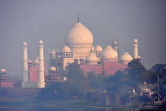 IN2830 Taj Mahal