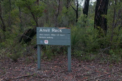 Just did a bit of the Anvil Rock walk