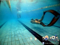 """02 febbraio 2017 - Prove sub & Freediving... • <a style=""""font-size:0.8em;"""" href=""""http://www.flickr.com/photos/138167729@N03/32659384691/"""" target=""""_blank"""">View on Flickr</a>"""