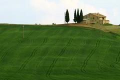 IMG_3364 (mauro muscas) Tags: paesaggio valorcia cretesenesi