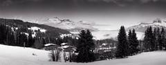 combloux, panorama, B&W, 4 (Patrick.Raymond (4M views)) Tags: motagne neige hiver haute savoie la cry ski argentique lomography horizon perfekt tmax expressyourself