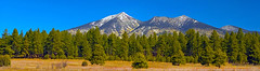 San Franciso Peaks (subgenius1) Tags: snow flagstaff ponderosa conifers absolutelystunningscapes
