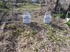 20170320_150450 (h.alfatli) Tags: bg 2017 mezar kabristan neofit bozveli bozvelievo alfatlı köyü momçilgrad
