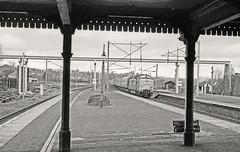 Oakleigh Park (Lost-Albion) Tags: 1975 gnr britishrail deltic lner oakleighpark 55010 d9010