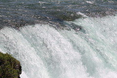 Niagara Falls (William Wilson 1974) Tags: ontario skyline niagarafalls waterfalls touristattraction niagarariver niagarafallsny