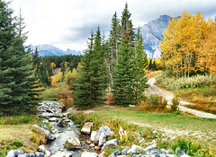 Banff National Park, Alberta  - ps6457-67 (photos by Bob V) Tags: autumn panorama fallleaves mountains fall rockies autumnleaves autumncolours alberta banff rockymountains albertacanada banffnationalpark fallcolours banffalberta banffpark banffalbertacanada cans2s mountainpanorama