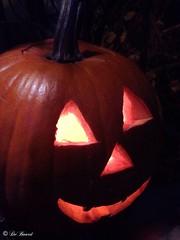 Happy Halloween (@DeBoard) Tags: autumn fall pumpkins traditions celebration