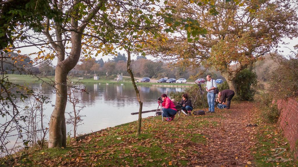 Fellow photographers at Hatchet Pond