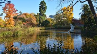 Herbst am Flora-Weiher