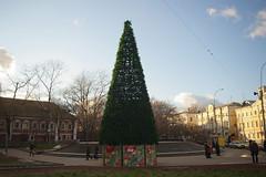 LI6K5911 (Бесплатный фотобанк) Tags: 2012 новогодняяелка новыйгод праздник россия москва