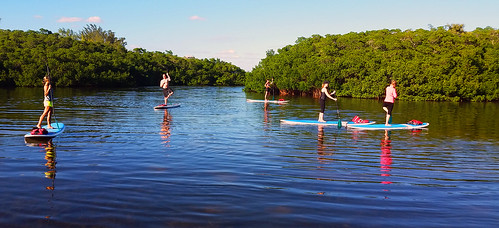 11_30_15 Paddleboard Yoga in Lido Mangroves FL 06