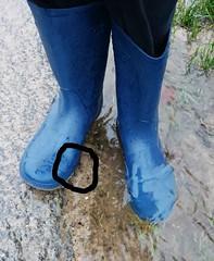 wet wellies (yvonne_2.0) Tags: boots ripped blau wellies galoshes rubberboots gummistiefel gumboots leaky nass rainboots risse löcher undicht regenstiefel gummistövlar