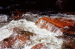 USA_2007--16 (vambo25) Tags: colorado nationalpark rockymountain