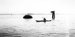 Upriver (Maike B) Tags: upriver stromaufwärts elbe wrack uwe sundown gegenlicht falkensteinerufer hamburg sonnenuntergang kajak