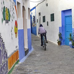 Racing … (halifaxlight) Tags: morocco asilah medina alleyway youth bike racing doors murals blue square windows grills plant