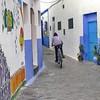 Racing … (halifaxlight) Tags: morocco asilah medina alleyway youth bike racing doors murals blue square windows grills plant