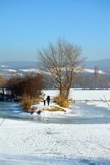 Slňava is frozen up (stano.jas.malak) Tags: piešťany slovakia slovensko zima ľad winter ice