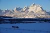 Stoic and Majestic (DigitalSmith) Tags: tetons grandtetonnationalpark mountains wyoming