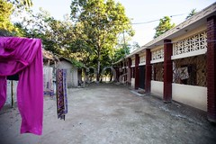 5D8_7428 (bandashing) Tags: rural village bangla house trees yard sylhet manchester england bangladesh bandashing aoa socialdocumentary akhtarowaisahmed