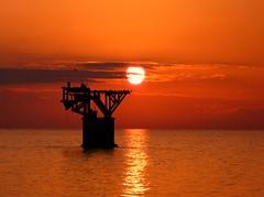 Donde descansan los pájaros (camus agp) Tags: mediterraneo marbella españa sol reflejos sunset