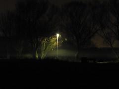 Misty lamp (Flapjack Dave) Tags: nighttime mist streetlight lightanddark