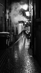 Cold, dark and wet.... (ChrisGibson2016) Tags: cold dark wet alleyway ginnel bins rubbish autumn architecture black buildings beauty beautiful building britain brown darken day darkened dappled doorways england europe european exploring feeling fall feature free features grey gray history interest life light leeds monochrome moment memories mysterious north outdoors open outdoor old yorkshire public photographer photography street shadows shades thoughts uk white winter west westyorkshire hidden historical secretive