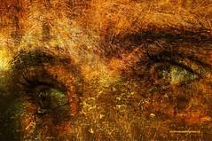 THE EYES OF TIME. (Viktor Manuel 990.) Tags: eyes ojos surrealism surrealista digitalart artedigital time tiempo querétaro méxico victormanuelgómezg