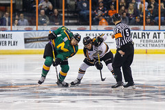 "Missouri Mavericks vs. Quad City Mallards, January 21, 2017, Silverstein Eye Centers Arena, Independence, Missouri.  Photo: John Howe / Howe Creative Photography • <a style=""font-size:0.8em;"" href=""http://www.flickr.com/photos/134016632@N02/32148955610/"" target=""_blank"">View on Flickr</a>"