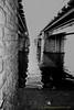 18012018-Histoire-de-Ponts-12 (Michel Dangmann) Tags: bridge exterieur fleuve general hiver lameuse lieux meuse namur outside pont river season soleil sun winter