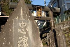 Yadorigi Shrine(寄神社) (daigo harada(原田 大吾)) Tags: yadorigi shrine torii gate stone sculpture 寄神社 鳥居 石碑
