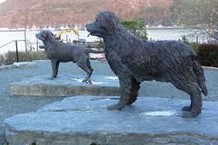 Statues of Labrador Retriever and Newfoundland Dog, St. John's, Newfoundland