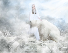White Polar Bear Hunter on the Ice in water drops. (lifthard1) Tags: bear animal water ice nature sky hunter drops antarctic arctic aggressive background big reflex captive captivity clouds change climate dangerous destruction endangered extinct extinction fur habitat hunt icecap mammal marine north paw polar pole power predator sea snow south swim swimmer threatened vulnerable walk wallpaper warming white wild wildlife winter zoo czechrepublic