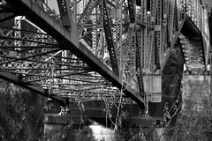 Trusses, Beams, and Girders of the Bridge of the Gods Bridge Structure (Black & White) (thor_mark ) Tags: blackwhite nikond800e day8 capturenx2edited colorefexpro triptomountrainierandcolumbiarivergorge columbiarivergorge columbiarivergorgenationalscenicarea bridge bridgecrossing bridgecolumns bridgeofthegods columbiariverhwy usroute30 historiccolumbiariverhighway historiccolumbiariverhighwayscenicbyway project365 nature portfolio columbiariver river steeltrusscantileverbridge bridgestructure trusses beams girders trees lookingwest or unitedstates
