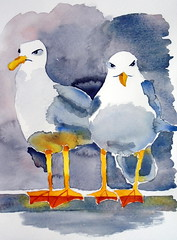Two seagulls, by Raquel - DSC00718 (Dona Minúcia) Tags: 2 two amigos cute bird art animal watercolor painting paper arte seagull pássaro study amizade fofo pintura gaivota aquarela gracinha firnedship