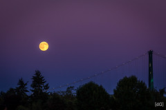Moonlight (Daniel's Clicks) Tags: moon canada vancouver bc moonrise westvan vancitybuzz