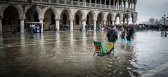 Hey Porter! (jayteacat) Tags: venice italy italia flood venezia flooded floodwater heyporter panasoniclumixdmclx100