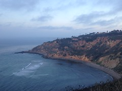 Coastline (2)