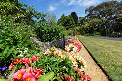 20151108-31-Government House open day (Roger T Wong) Tags: gardens outdoors australia tasmania hobart governmenthouse 2015 architectureweek sony1635 rogertwong sel1635z sonya7ii sonyilce7m2 sonyalpha7ii sonyfe1635mmf4zaosscarlzeissvariotessart openhousehobart