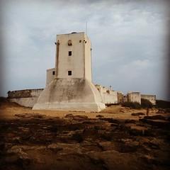 Buenos das castilleros!!! Maanita fresca de... (Templo de Melqart-Hrcules) Tags: poniente castillosanctipetri uploaded:by=flickstagram instagram:photo=10512397835457781512021755074
