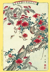 Chinese trumpet-creeper, silktree and varied tit (Japanese Flower and Bird Art) Tags: flower bird art japan print japanese tit chinese grandiflora fabaceae woodblock nihonga varied silktree ukiyo albizia campsis trumpetcreeper bignoniaceae julibrissin varius paridae gyosan sittiparus readercollection