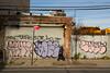 (a.tanski) Tags: street new york city nyc people ny brooklyn photography soze icr tafk seka cayz