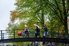 Amsterdam (emadsameh) Tags: bridge winter people cold holland amsterdam bicycle nikon europe random eurotrip tamaron d5100