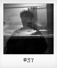 """#DailyPolaroid of 4-11-15 #37 • <a style=""""font-size:0.8em;"""" href=""""http://www.flickr.com/photos/47939785@N05/23642092141/"""" target=""""_blank"""">View on Flickr</a>"""