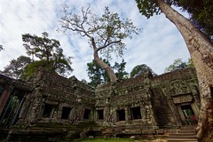 Ta Prohm (Sarah Marston) Tags: november trees temple cambodia sony unescoworldheritagesite alpha siemreap wat taprohm 2015 a65 wattaprohm